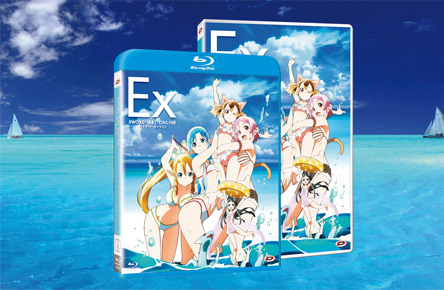 sword art online extra packaging